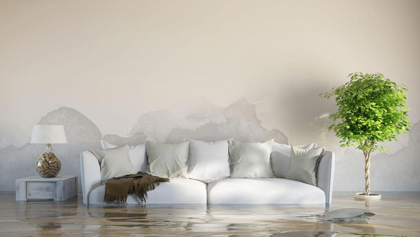 Cómo eliminar las humedades más comunes en viviendas